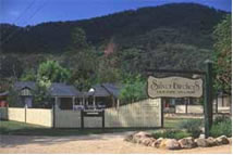 The Silver Birches Holiday Village - Kingaroy Accommodation
