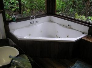 The Canopy Rainforest Tree Houses and Wildlife Sanctuary - Kingaroy Accommodation