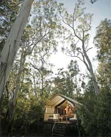 Paperbark Camp - Kingaroy Accommodation