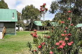 Derwent Bridge Chalets  Studios - Kingaroy Accommodation