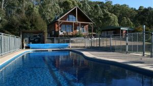 Karoonda Olive Grove Retreat at Mt Buffalo Olives - Kingaroy Accommodation
