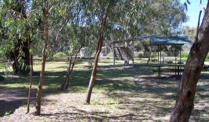 Coach and Horses campground - Kingaroy Accommodation