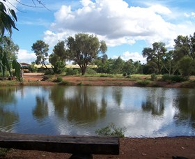 Gemtree Caravan and Tourist Park - Kingaroy Accommodation