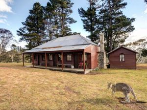 The Pines Cottage - Kingaroy Accommodation