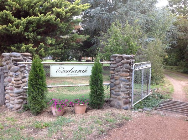 Coodravale Homestead - Kingaroy Accommodation
