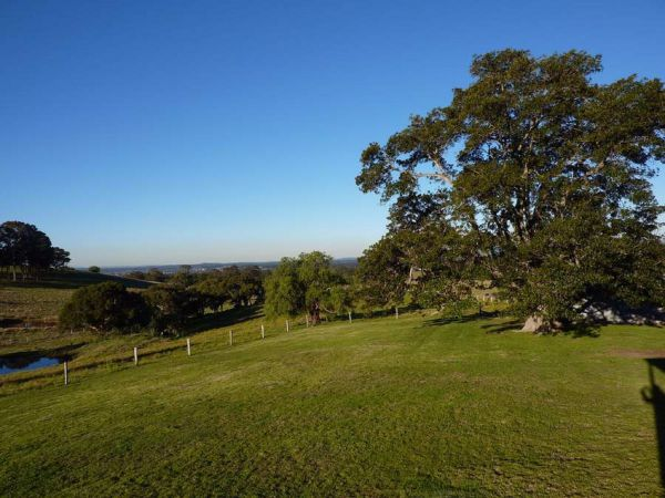 Orangevale At Mount View - Kingaroy Accommodation