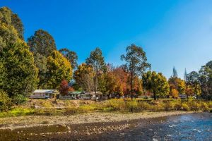 Porepunkah Bridge Holiday Park - Kingaroy Accommodation