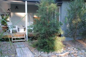 Native B and B - Callala Bay - Kingaroy Accommodation