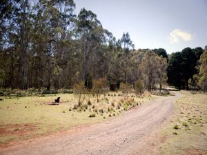 The Pines campground - Kingaroy Accommodation