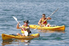 Manly Kayaks - Kingaroy Accommodation
