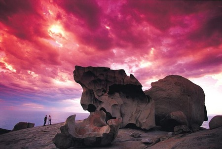 Kangaroo Island Adventure Tour 2 day/1 night - Kingaroy Accommodation