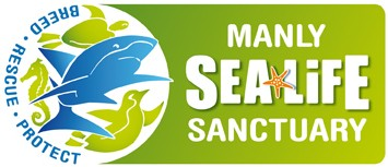 Manly SEA LIFE Sanctuary - Kingaroy Accommodation