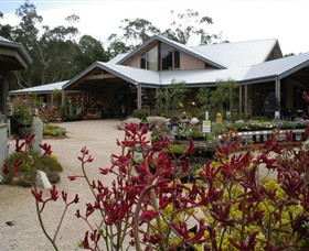 Kuranga Native Nursery and Paperbark Cafe - Kingaroy Accommodation