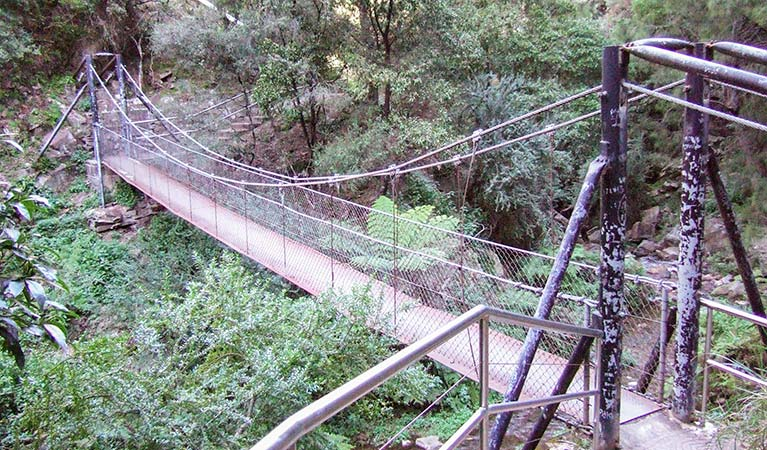 Jenolan River walking track - Kingaroy Accommodation