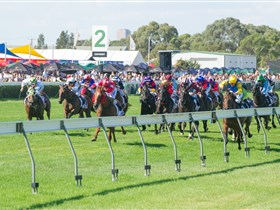 Morphettville Racecourse - Kingaroy Accommodation