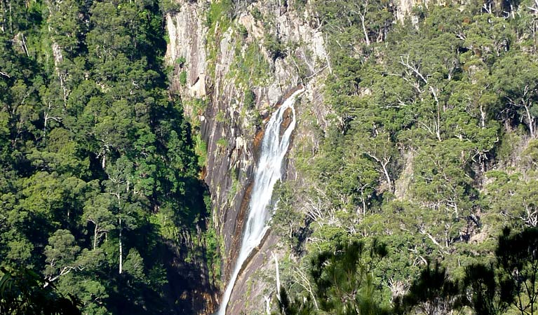 Carrai National Park - Kingaroy Accommodation