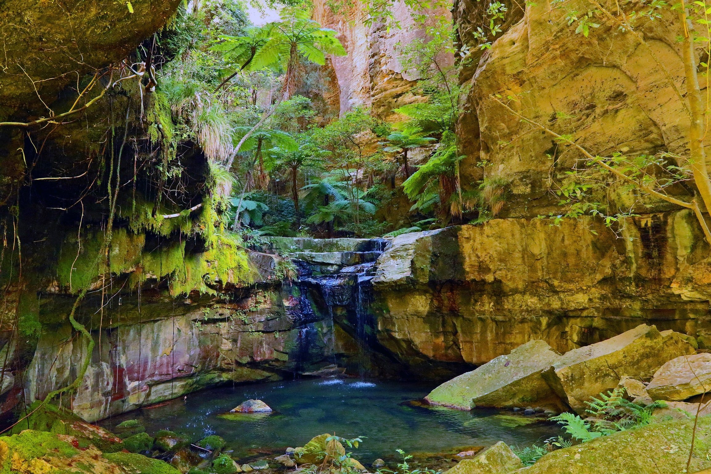 Glimpse of the Outback 5 Day Tour - Roma and Surrounds - Kingaroy Accommodation