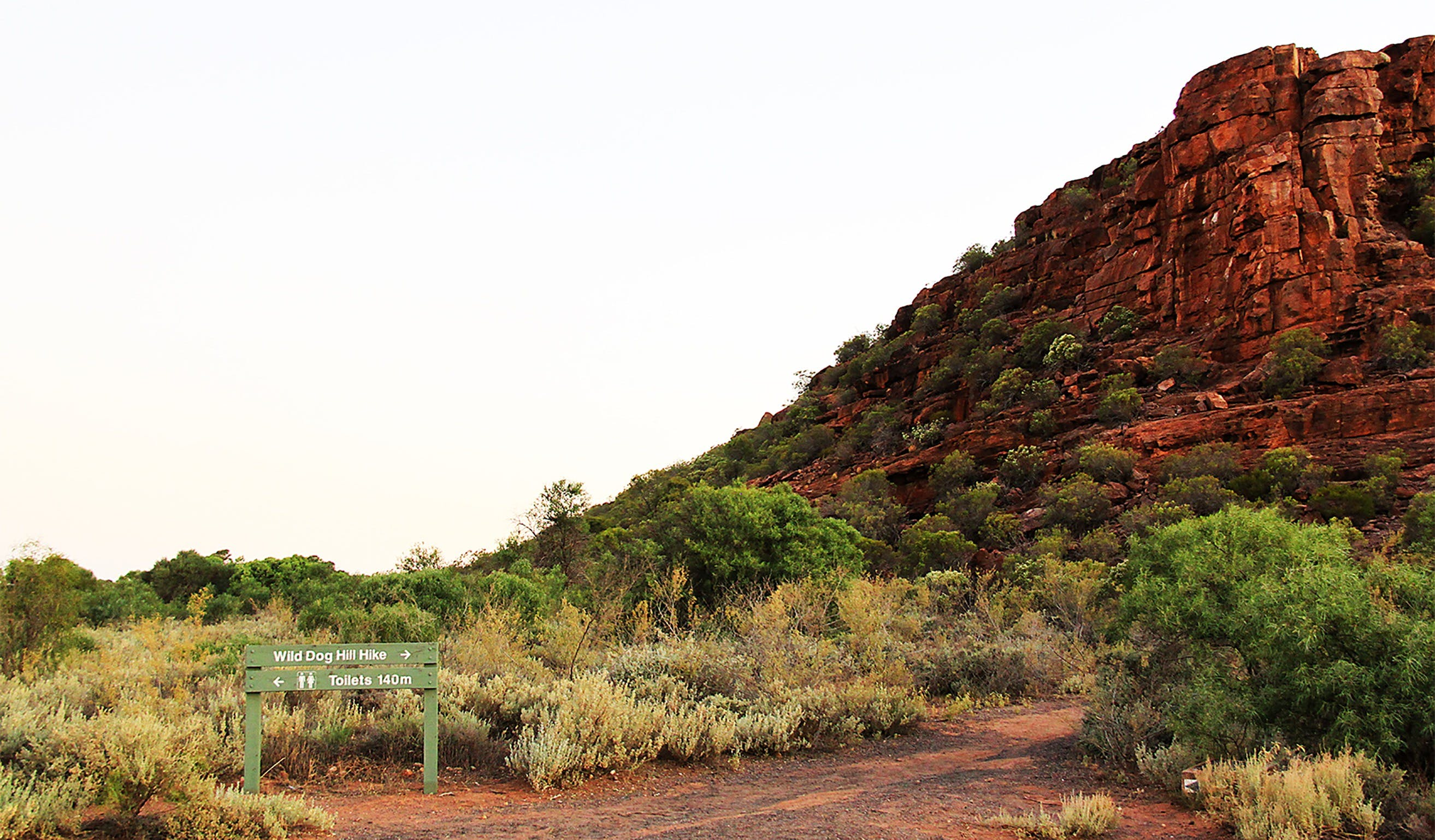 Whyalla Conservation Park - Kingaroy Accommodation