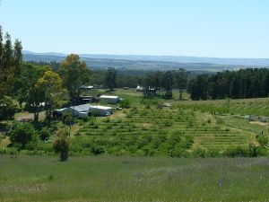 Taralee Orchards - Kingaroy Accommodation