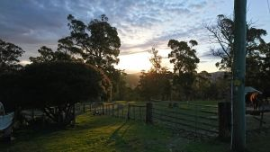 Glengarry farm stay BnB - Kingaroy Accommodation
